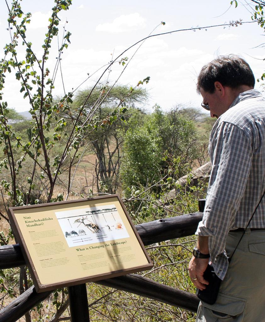 Serengeti 111