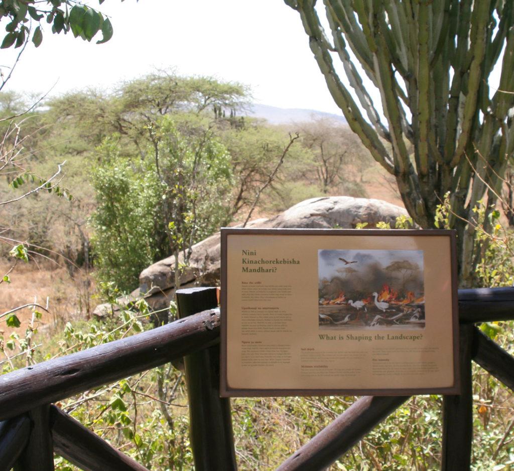 Serengetti Visitor Center - 005