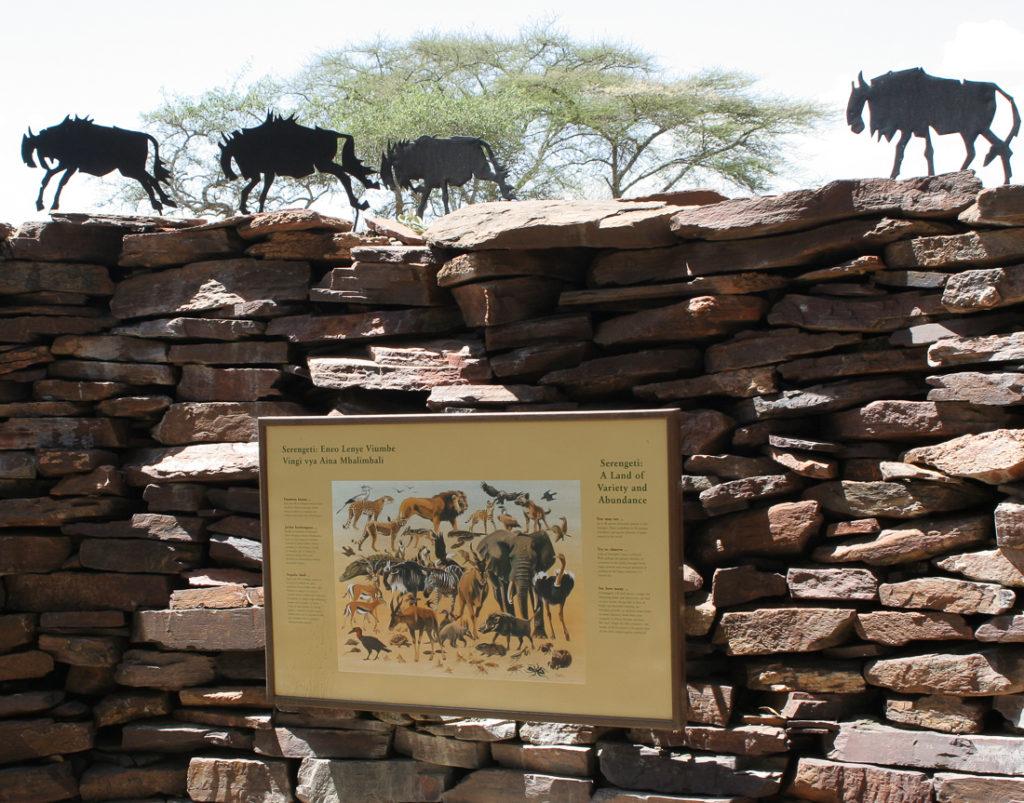 Serengetti Visitor Center - 018
