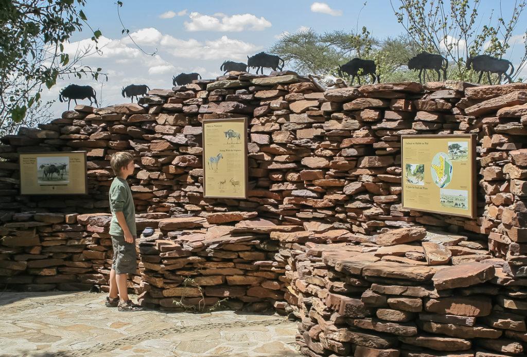 Serengetti Visitor Center - 027