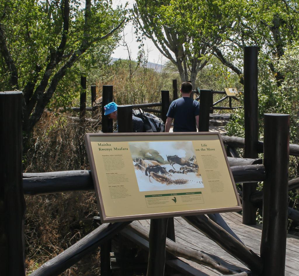 Serengetti Visitor Center - 074