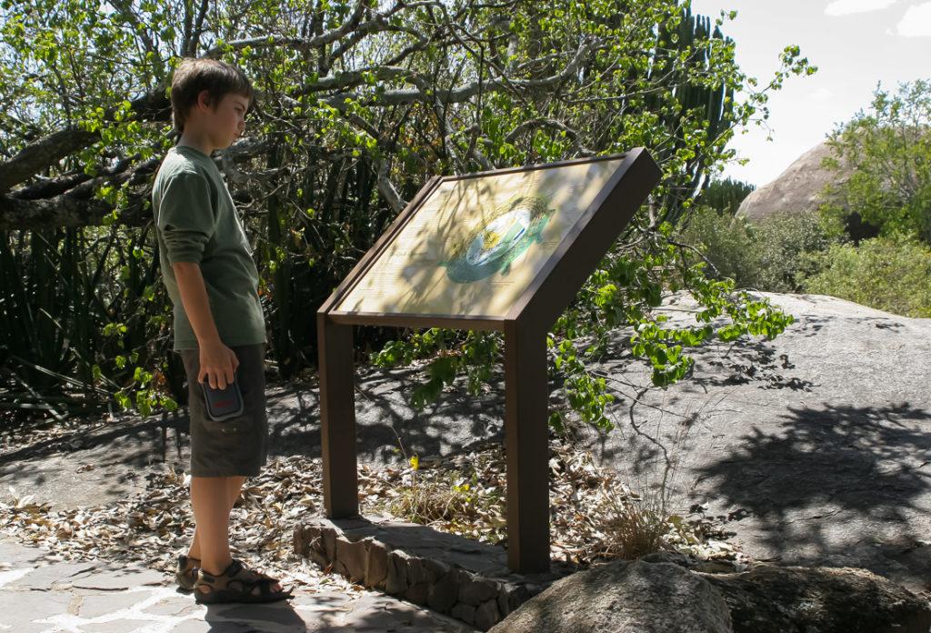 Serengetti Visitor Center - 090