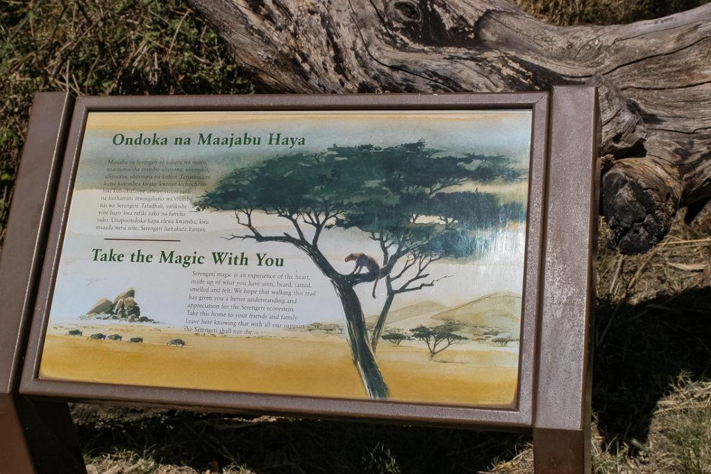 Serengetti Visitor Center - 100